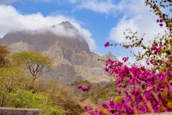 Pico de Antonia_cover photo